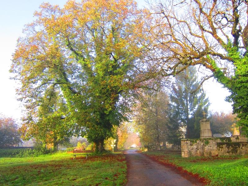 chemin église